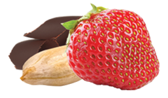 Focus 4 Kids! Chocolate Strawberry